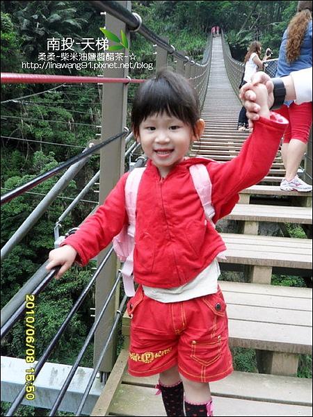2010-0608-南投-天梯 (20).jpg