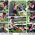 2011-0226-灣潭玫瑰草莓園 (57).jpg