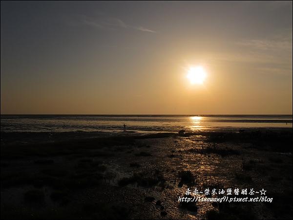 2010-0531-香山濕地-夕陽照 (1).jpg