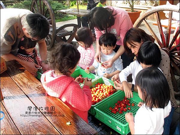 2011-0226-灣潭玫瑰草莓園 (22).jpg