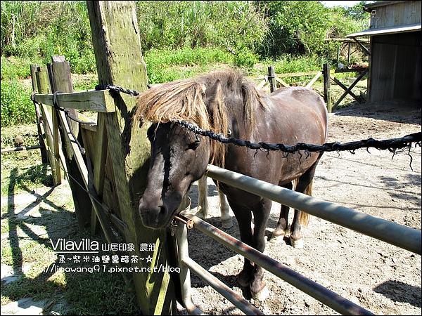 2010-0531-vilavilla山居印象農莊 (6).jpg