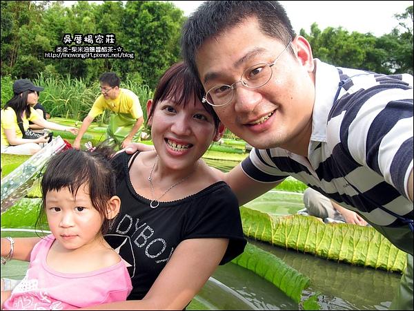 吳厝楊家莊-2010-0815 (22).jpg