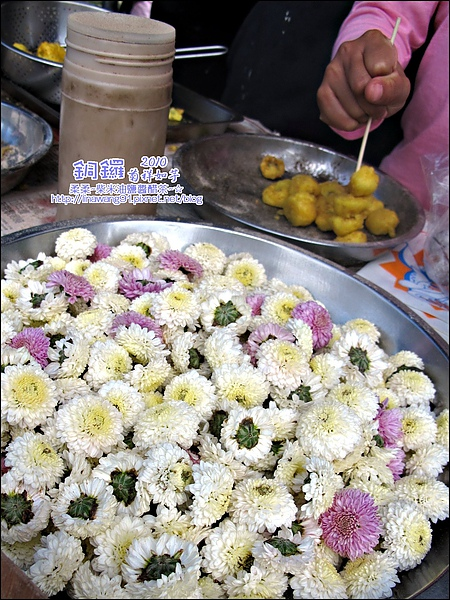 2010-1114-2010-銅鑼-杭菊芋頭節 (9).jpg