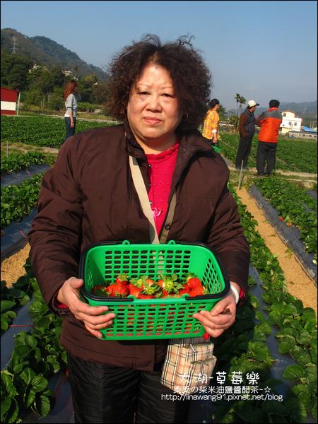 2011-0102-大湖採草莓 (25).jpg