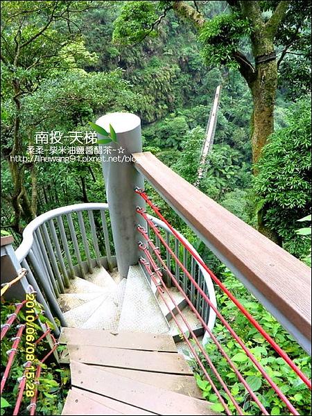 2010-0608-南投-天梯 (10).jpg