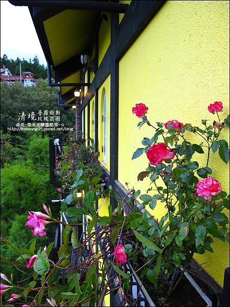 普羅旺斯玫瑰莊園清晨 -2010-0920 (7).jpg