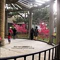 2011-0223-新竹公園-賞櫻花 (15).jpg