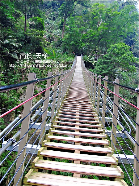 2010-0608-南投-天梯 (26).jpg