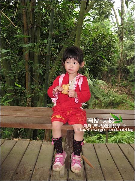 2010-0608-南投-天梯 (36).jpg