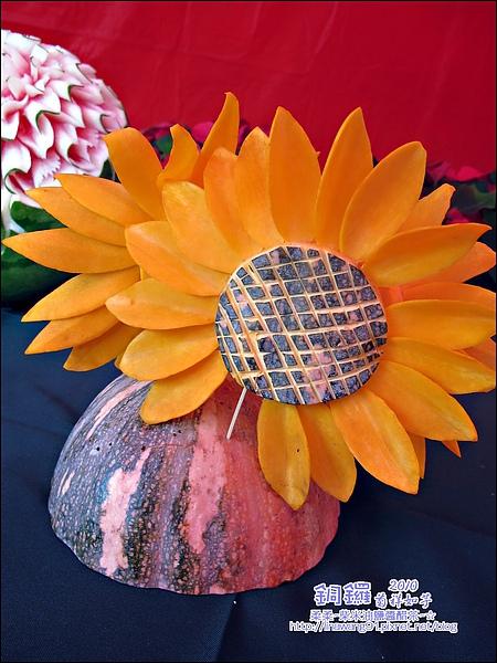 2010-1114-2010-銅鑼-杭菊芋頭節 (1).jpg