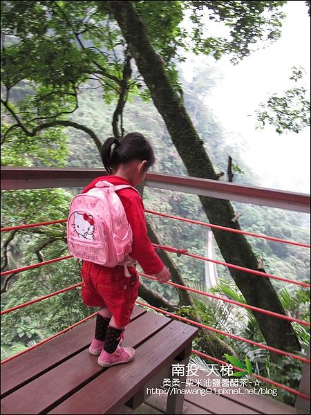 2010-0608-南投-天梯 (34).jpg
