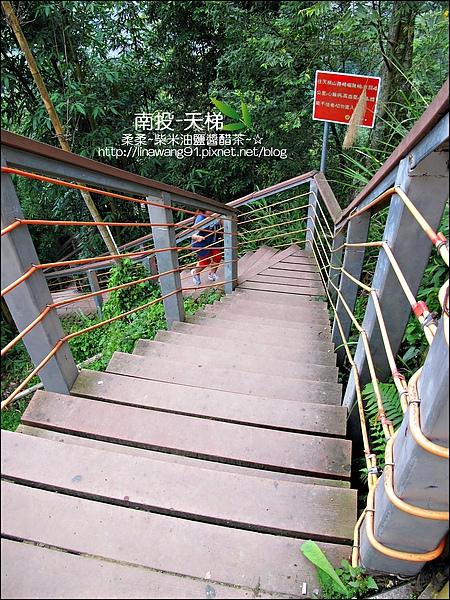 2010-0608-南投-天梯 (42).jpg
