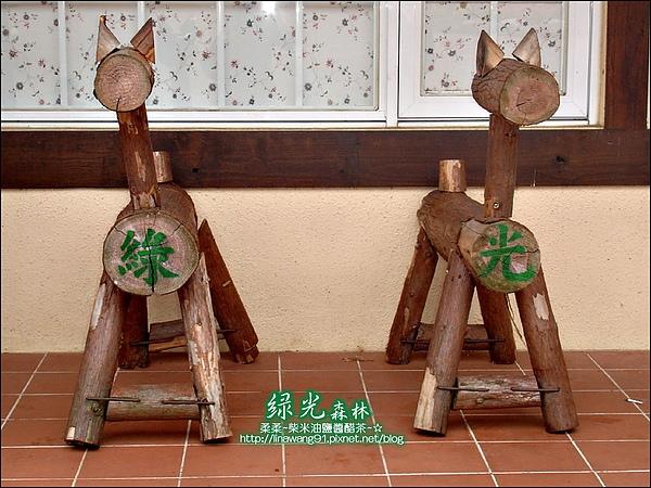2010-0324-桃園-綠光森林 (2).jpg