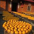 2010-1026~1102-新埔-衛味佳柿餅 (15).jpg