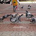 2010-0224-新竹公園-新竹孔廟 (14).jpg