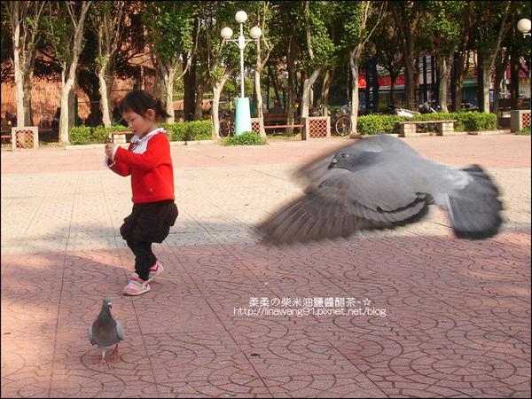 2010-0224-新竹公園-新竹孔廟 (16).jpg