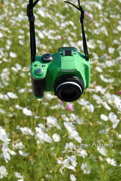 2010-Autumn-85.jpg