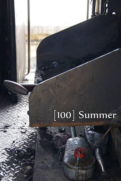 100 Summer-33.jpg