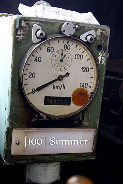 100 Summer-38.jpg