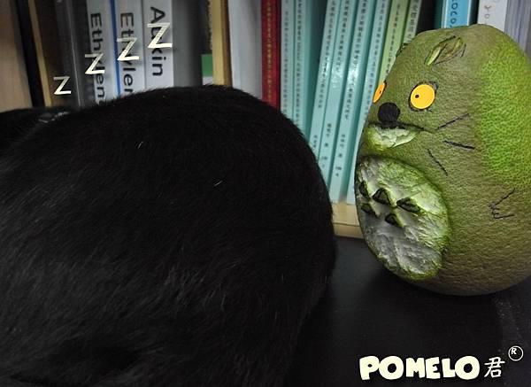 Pomelo-2.jpg