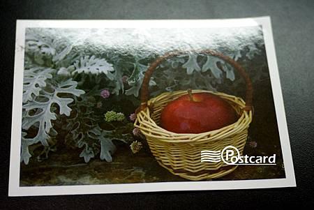 Postcard-63.jpg