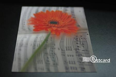 Postcard-60.jpg