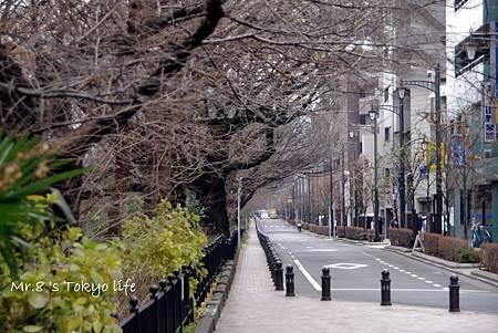TOKYO-D2-Round1-14.jpg
