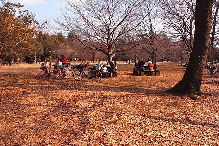 TOKYO-D2-Round3-2.jpg