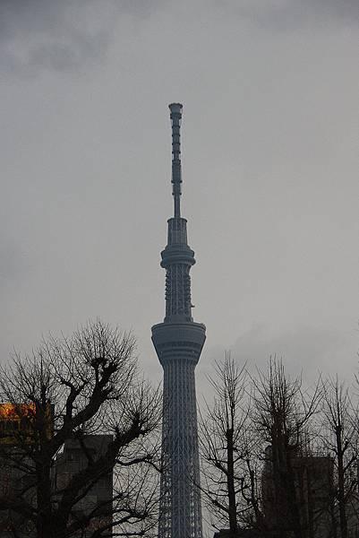 TOKYO-D2-Round4-11.jpg