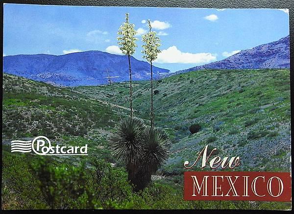 Postcard-103