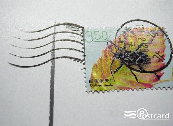 Postcard-0306-4