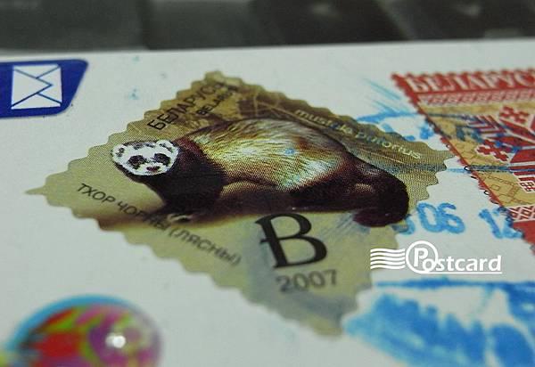 Postcard-12-13