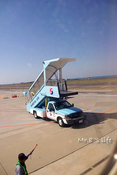 Fly-15