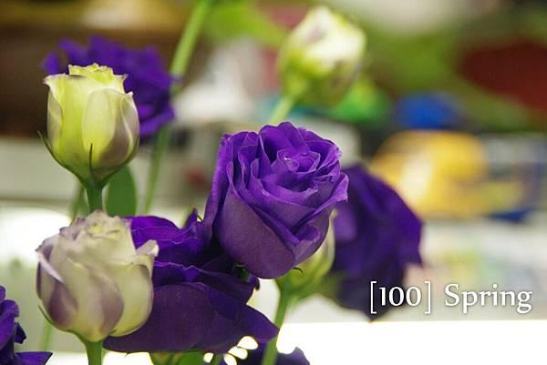 100 Spring-87.jpg