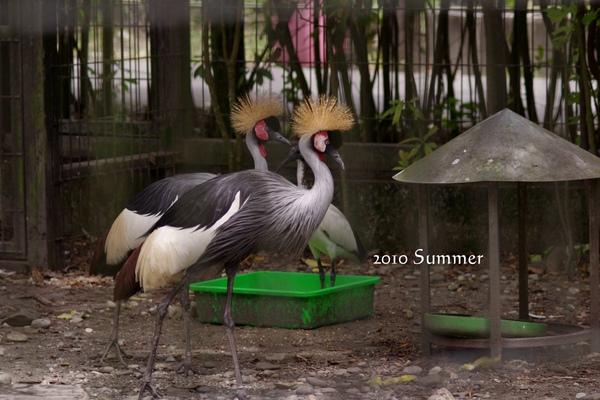 2010 summer-84.jpg