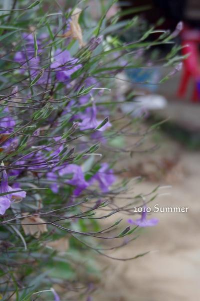 2010 summer-94.jpg