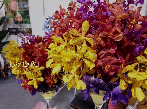 Flora-53.jpg