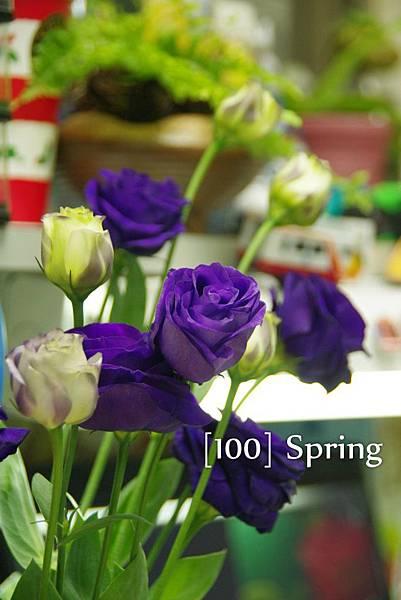 100 Spring-89.jpg