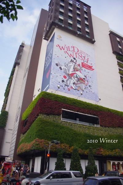 2010 winter-10.jpg