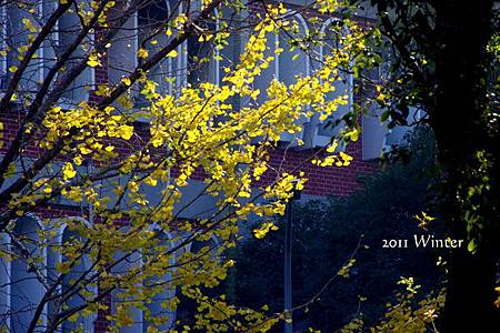 2011 Winter-43.jpg