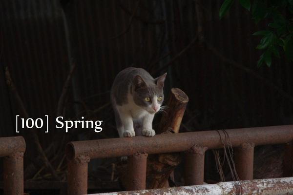 100 Spring-40.jpg