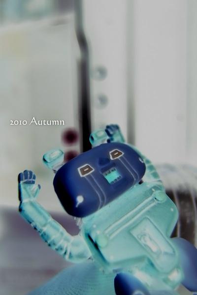 2010-Autumn-21.jpg