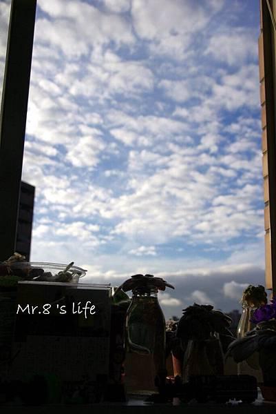 Life-44.jpg