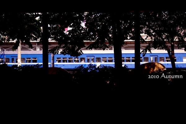 2010-Autumn-83.jpg