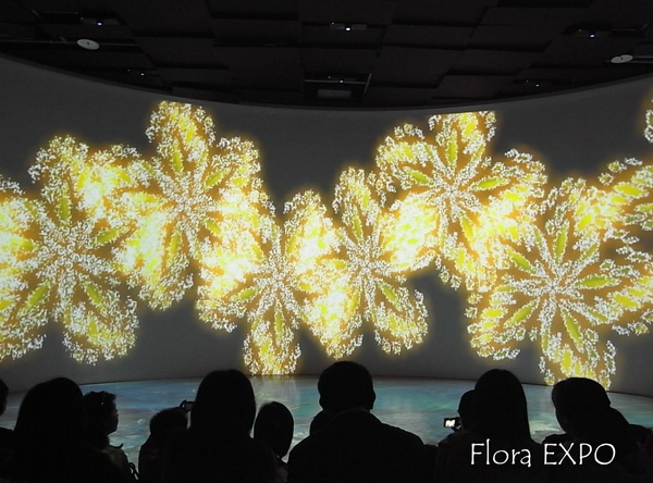 Flora-50.jpg