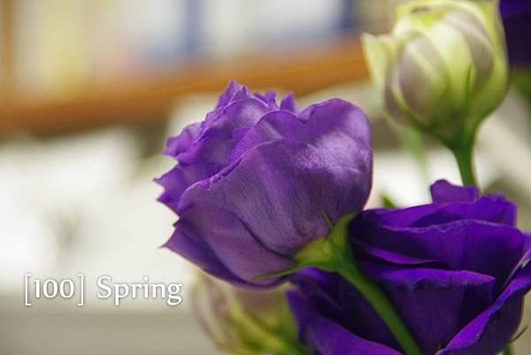 100 Spring-86.jpg