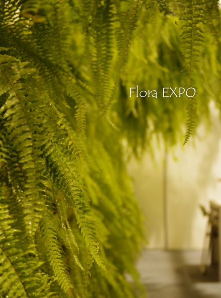 Flora-35.jpg