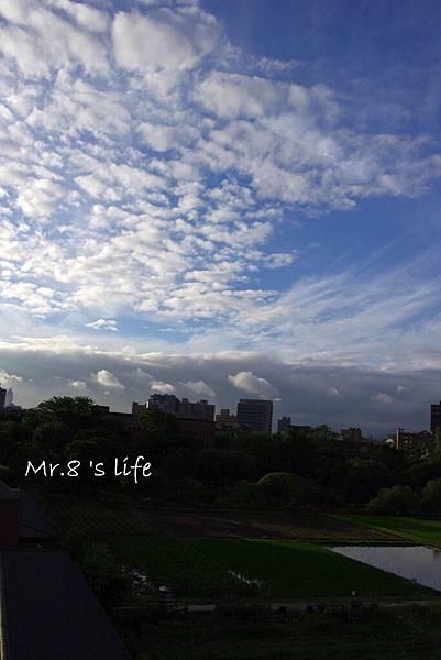 Life-45.jpg