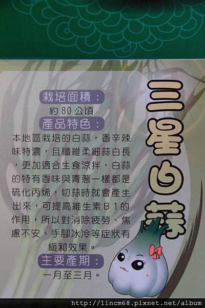 1001028-宜蘭縣三星鄉-青蔥文化館- (38).JPG