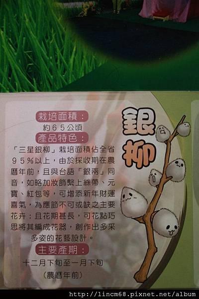 1001028-宜蘭縣三星鄉-青蔥文化館- (39).JPG